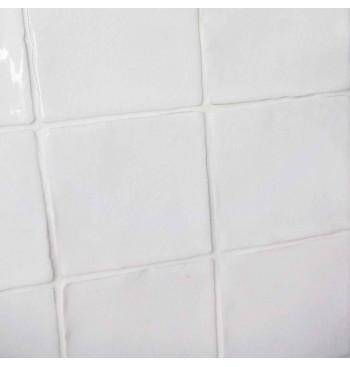 Spaans witje Wit Glans10x10cm